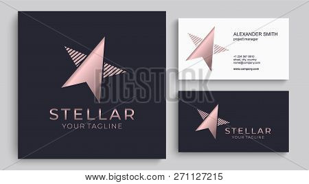 Star Logo Vector. Universal Abstract Logo With A Star Symbol For Any Business. Star Sign - A Leader,