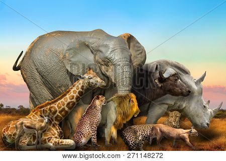 Side View Of Big Five And Wild African Animals Composition On Savannah Landscape At Sunset Light. Se