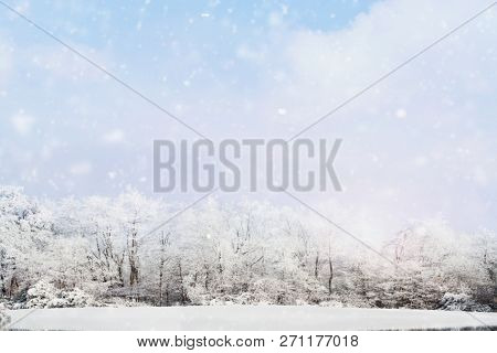 Blurred Background Of Snow Falling Softly Against A Winter Landscape Of Snow Covered Trees With Larg