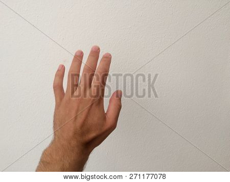 White Man's Palm, Outstretched Palm, Hand On A White Background, Back Of The Hand, Part Of The Body,