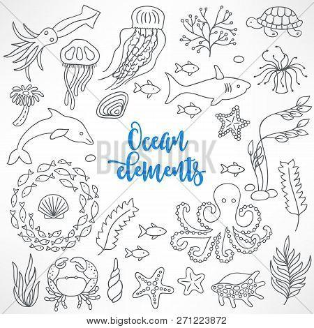 Set Of Hand Drawn Underwater Animals. Jellyfish, Shark, Octopus, Tortoise, Cuttlefish, Dolphin, Seaw