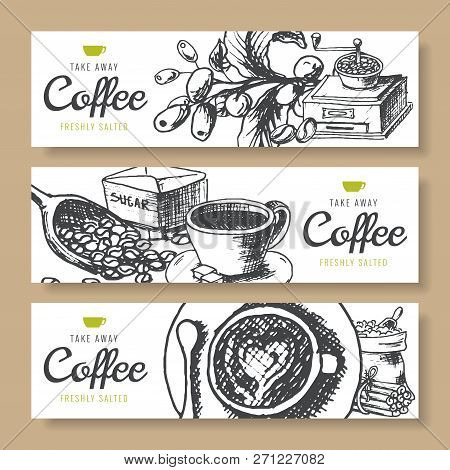 Coffee Beans, Roasted Coffee, Background Ink Hand Drawn Vector Banners. Fresh Turkish Coffee.