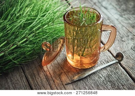 Vintage Glass Cup Of Healthy Tea Or Infusion And Bunch Of Horsetail Herbs On Wooden Table. Herbal Me