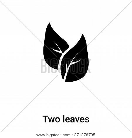 Two Leaves Icon In Trendy Design Style. Two Leaves Icon Isolated On White Background. Two Leaves Vec