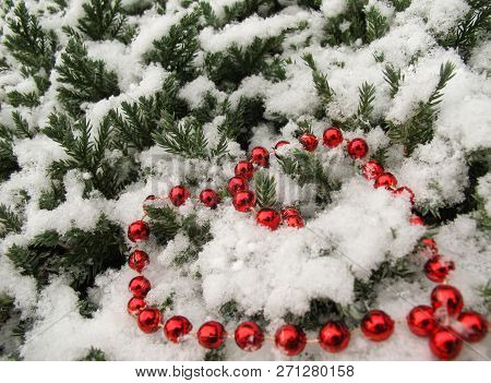 The Texture Of Many Conifer Tree Branches Covered With Snow And Red Beads In Shape Of A Heart. Backg