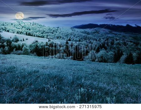 Beautiful Mountainous Countryside In Springtime At Night. Grassy Meadows And Forested Hill. Freshnes