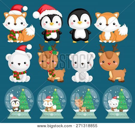 A Vector Set Of Many Animals Inside Snow Globes