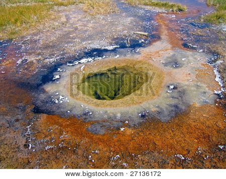 hot spring close-up in Yellowstone national park