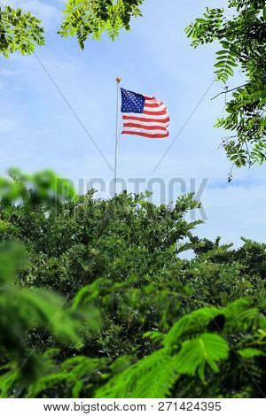 Conceptual image of waving American flag hanged at tall pole in green trees over blue sunny sky