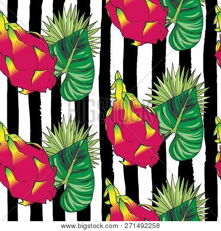 Vector Hand Drawn Abstract Tropical Seamless Pattern Of Exotic Fruit Pitahaya On Black Strips. Drago