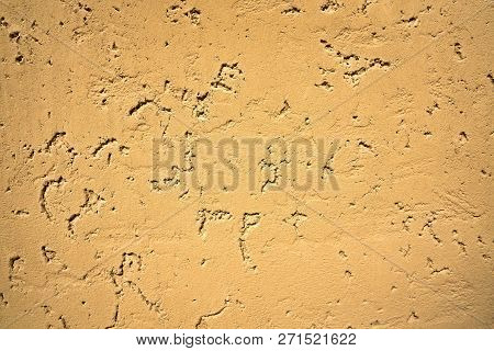 Plaster Structure On A Wall Surface Of A Facade