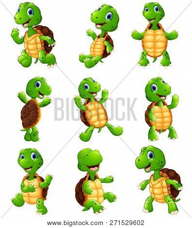 Vector Illustration Cartoon Of The Happy Turtle Collection Set