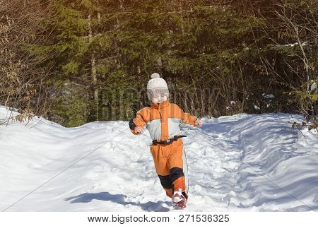 Little Boy In An Orange Jumpsuit Running On Snow-covered Road In A Coniferous Forest. Winter Sunny D