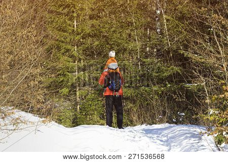 Man With Backpack And Son On Shoulders Stands Against The Background Of Snow And Coniferous Trees In