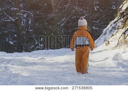 Little Boy In An Orange Jumpsuit Standing On Snow-covered Road In A Coniferous Forest. Winter Sunny