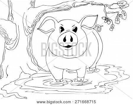 The Big Pig Is Standing In The Mud Near The Oak. Hand Drawn Illustrations For Coloring