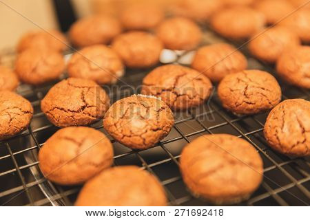 Close Up View Of Chocolate Cookies On Cooling Rack.