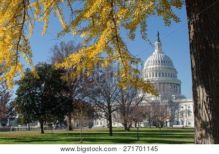 United States Capitol Building in autumn - Washington DC United States of America