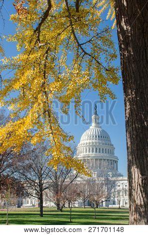 United States Capitol in autumn - Washington DC United States of America