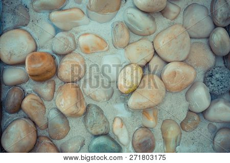Wet Sea Pebbles And Seashells On Wet Beach Sand With Transparent Water Surf. Natural Sea Stones Clos