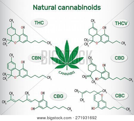 Chemical Formulas Of Natural Cannabinoids In Plants Of The Genus Cannabis : Tetrahydrocannabinol (th