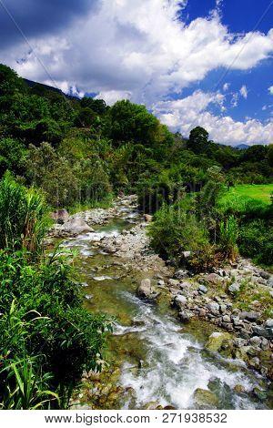 Landscape of Cocora valley, Salento, Colombia, South America