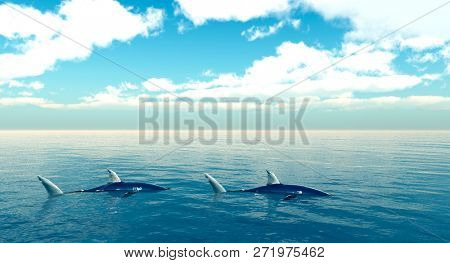 sharks on a sunny day - 3D rendering