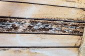 Rotting due to humidity and growth of molds  wooden roof structures. Wood roof construction damaged of black fungus. poster
