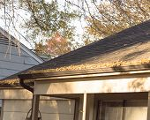 Close up rain gutter on residential home clogged with dried fall leaves. Shingles and gutter with dry brown leaves. Home roof maintenance problem with debris, twigs on gutter concept poster