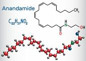Anandamide molecule. It is endogenous cannabinoid neurotransmitter. Structural chemical formula and molecule model. Vector illustration poster