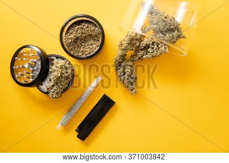 Marijuana Nature Bud. Yellow Background. The Pot Leaves On Buds. Cannabis Weed Bud And Grinder.