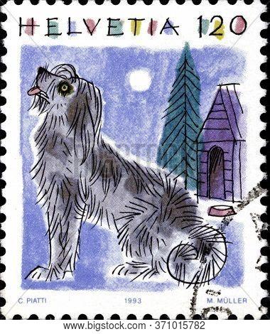 02 10 2020 Divnoe Stavropol Territorium Russia The Postage Stamp Switzerland 1993 Animalia Canis Can