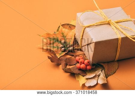 Holiday Present. Special Occasion. Gift Box. Foliage Composition Orange Background