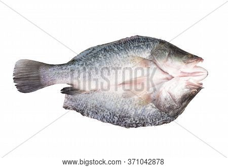 Fresh Sea Bass Fillets And Cut Isolated On White Background. (this Has Clipping Path)