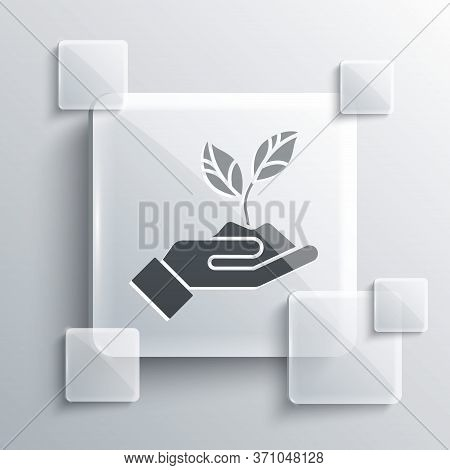 Grey Plant In Hand Of Environmental Protection Icon Isolated On Grey Background. Seed And Seedling.