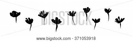 Hand Drawn Black Flowers. Grunge Dirty Decorative Vector Floral Collection, Isolated On White Backgr