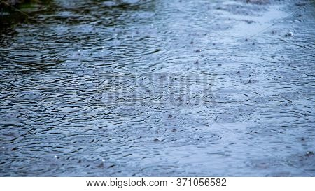 Puddle With Raindrops And Circles On The Water, Background Puddle Rain
