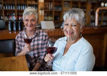 Portrait of smiling two female senior friends having red wine in restaurant
