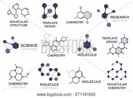 Molecule Badge. Bio Molecular Hexagonal Structure, Macro Molecules And Chemical Laboratory Research.
