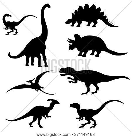 Vector Set Of Different Dinosaur Silhouettes On A White Isolated Background.