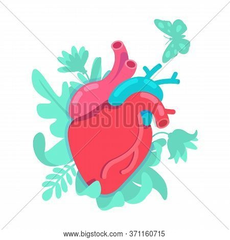 Anatomical Heart Flat Concept Vector Illustration. Cardiovascular Disease Prevention. Transplant For