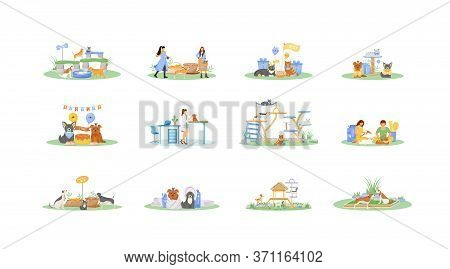 Pet Owner Flat Color Vector Faceless Characters Set. Cat Grooming Salon. Dog Play On Playground. Goa
