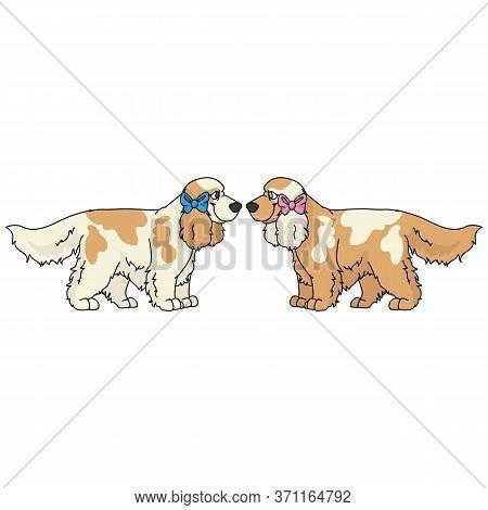 Cute Cartoon Cocker Spaniel Dog Boy And Girl Vector Clipart. Pedigree Kennel Dog Lovers. Purebred Do