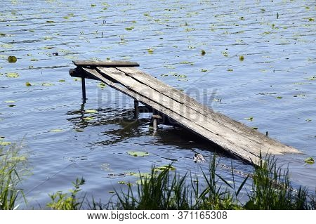Old Wooden Sunken Pier In The Lotus Lake. Russia, Far East