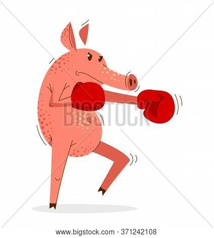 Funny Cartoon Pig Boxing Training In Gloves Vector Illustration, Animal Character Swine Drawing.