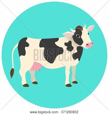 Cute White Cow With Black Spots. Animal On Light Blue Background. Vector Illustration.
