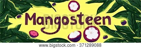 Sliced Purple Mangosteen Fuit, Mangosteen Pattern, Birthday Card