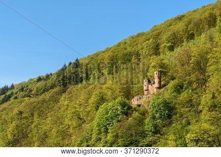 Ruin Of Castle Schadeck (schwalbennest) On A Hillside, Neckarsteinach, Neckar Valley, Hesse, Germany