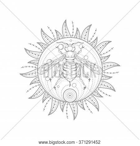 Vector Illustration With Hand Drawn Wasp And Sacred Symbol On White Background. Abstract Mystic Sign