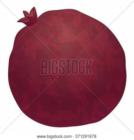 Whole Pomegranate Icon. Cartoon Of Whole Pomegranate Vector Icon For Web Design Isolated On White Ba